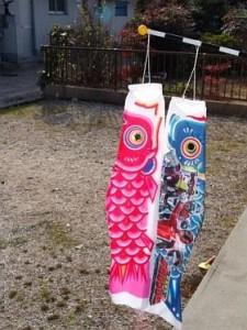 fish-kites-1
