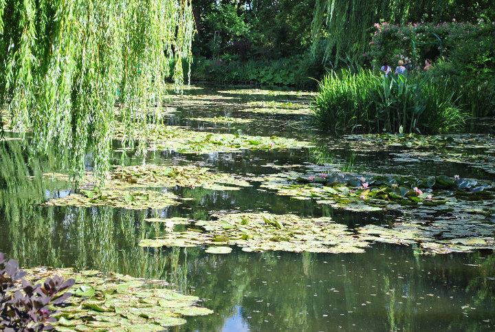 Monet's Garden3